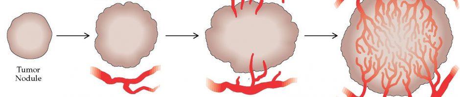 paraziták a nasopharyngealis nyálkahártyában