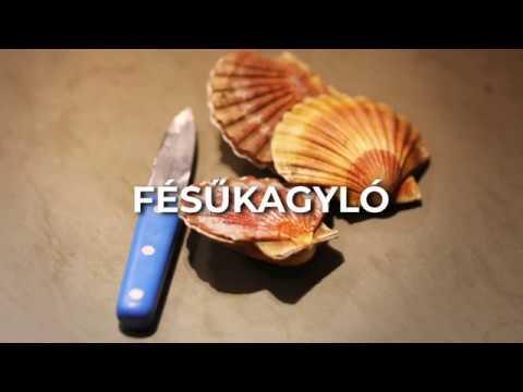 kagylók parazitái