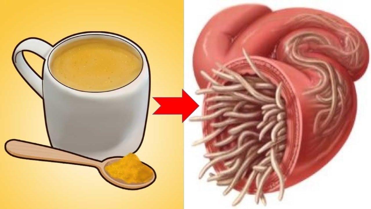 rossz lehelet gyomorbetegséggel a paraziták melyik terméket nem szeretik