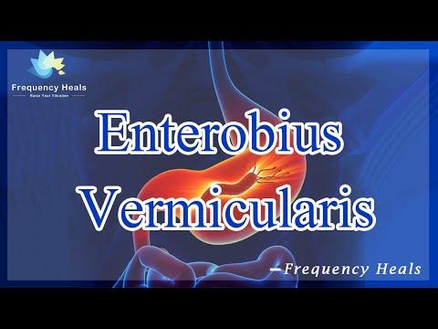 Férgek kaparása, ahogy veszik - Enterobiasis kerítés