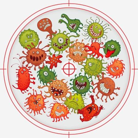 méregtelenítő reakció parazita kezelési szakaszai