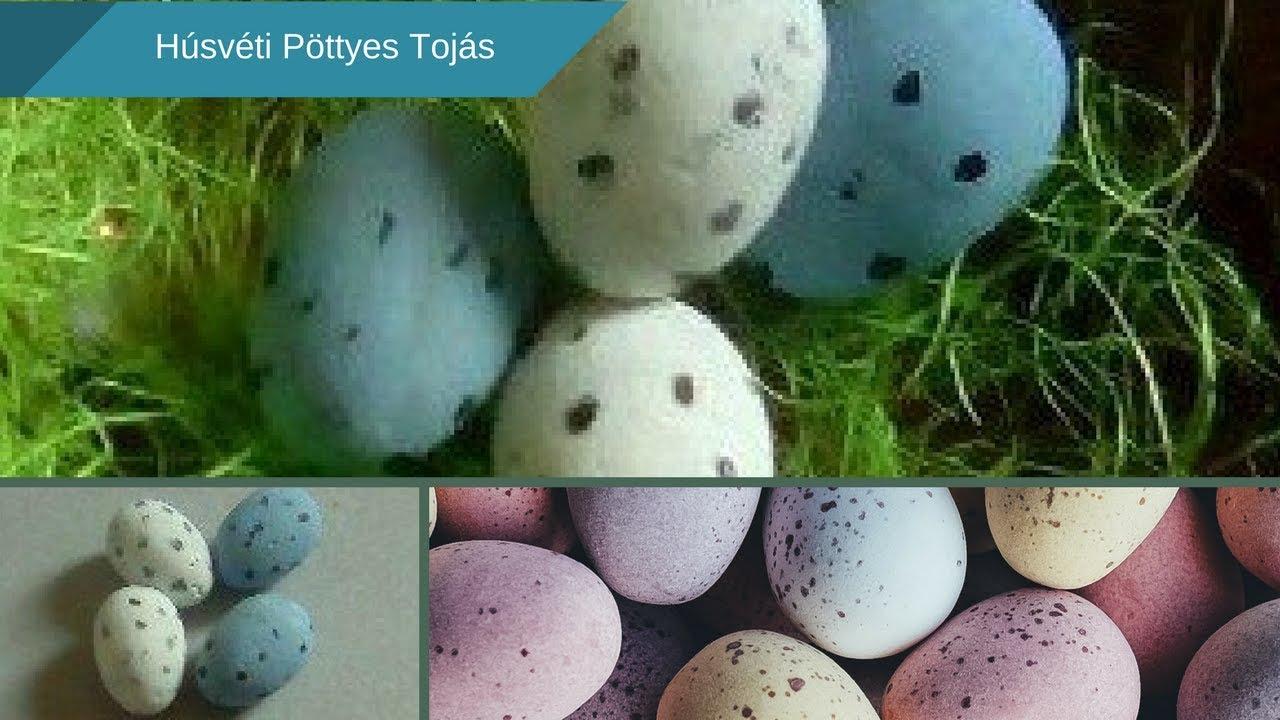 ostorféreg- tojás leírása mit kell tenni, ha pinworm tojásokat találunk