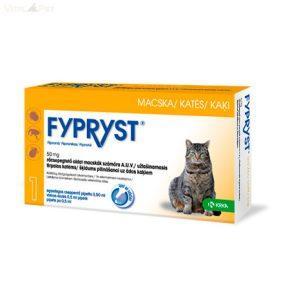 a paraziták megelőzésére szolgáló legjobb gyógyszer amikor a rossz lehelet és a gyomor fáj