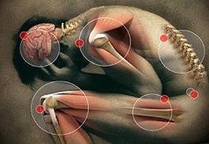 a férgek tünetei és gyógyításai