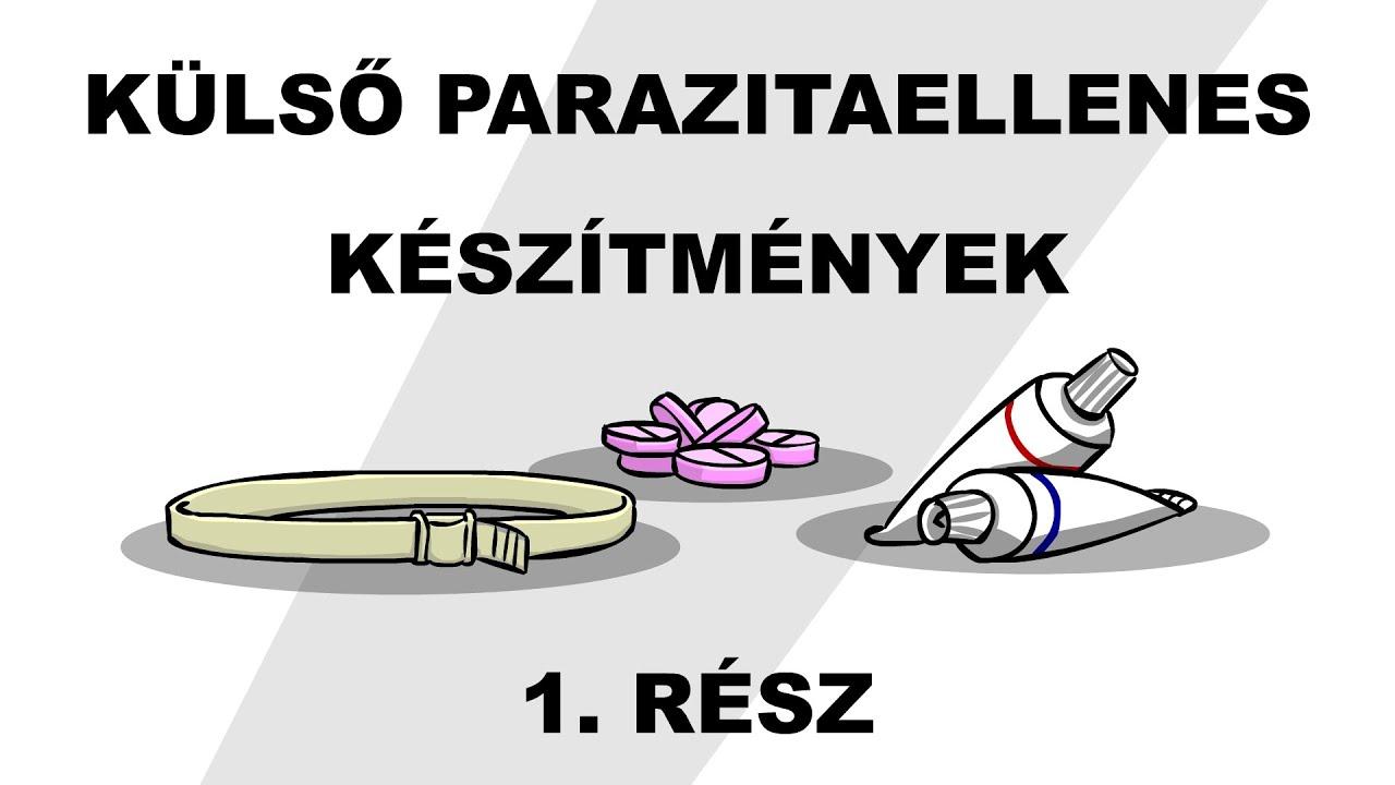 parazita kezelési szakaszai